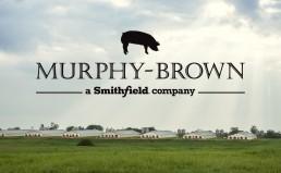 Murphy Brown Logo