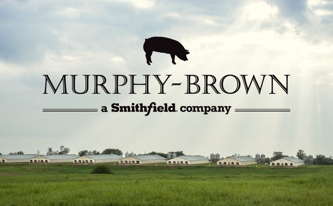 Murphy Brown Logo