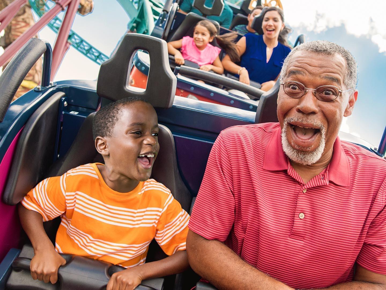 Busch Gardens Roller Coaster
